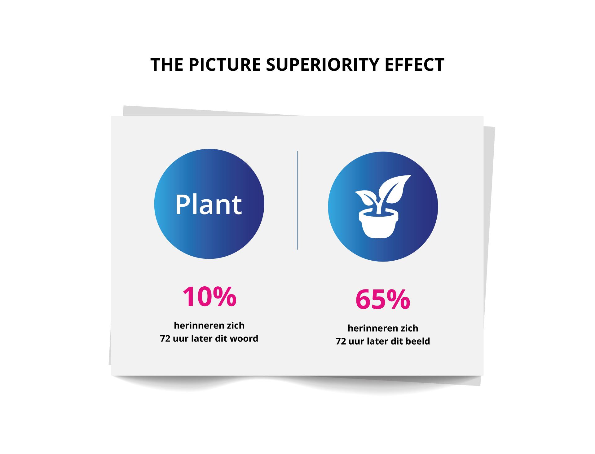Beeldmarq | The picture superiority effect | Het nut van infographics in crisistijd | Wat is een infographic